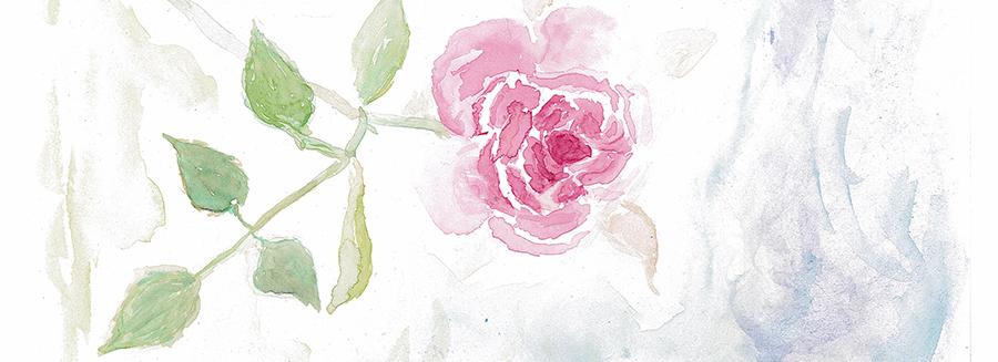 Rose_aqua